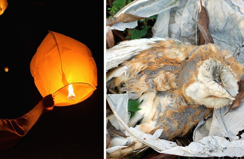 Conservatives helped protect animals and people from sky lanterns danger